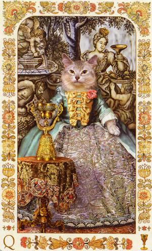 Богемские барочные коты галерея